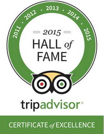 Tripo Advisor Logo